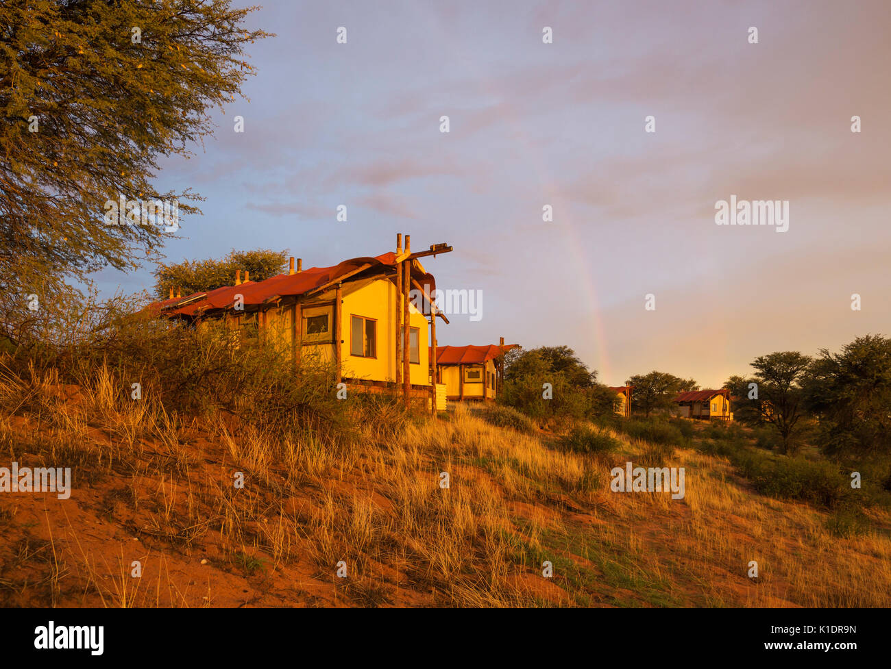 Stilt canvas tents of the Kalahari Tented C& at ridge of sand dune evening light with rainbow rainy season Kalahari Desert & Stilt canvas tents of the Kalahari Tented Camp at ridge of sand ...