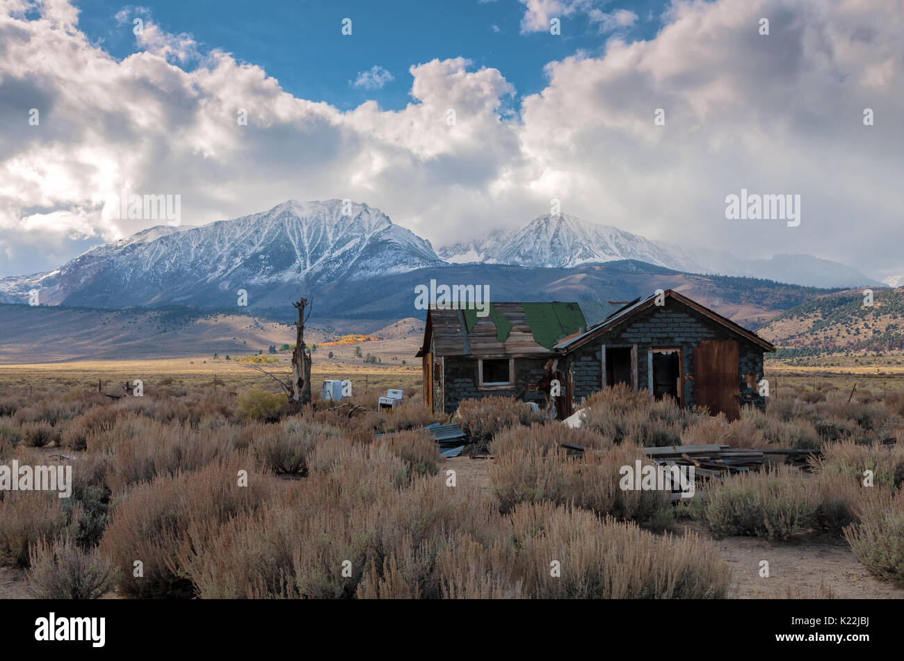 A lone  abandon house among the sagebrush on the Mono Basin and the approaching early winter storm, Eastern Sierra Stock Photo