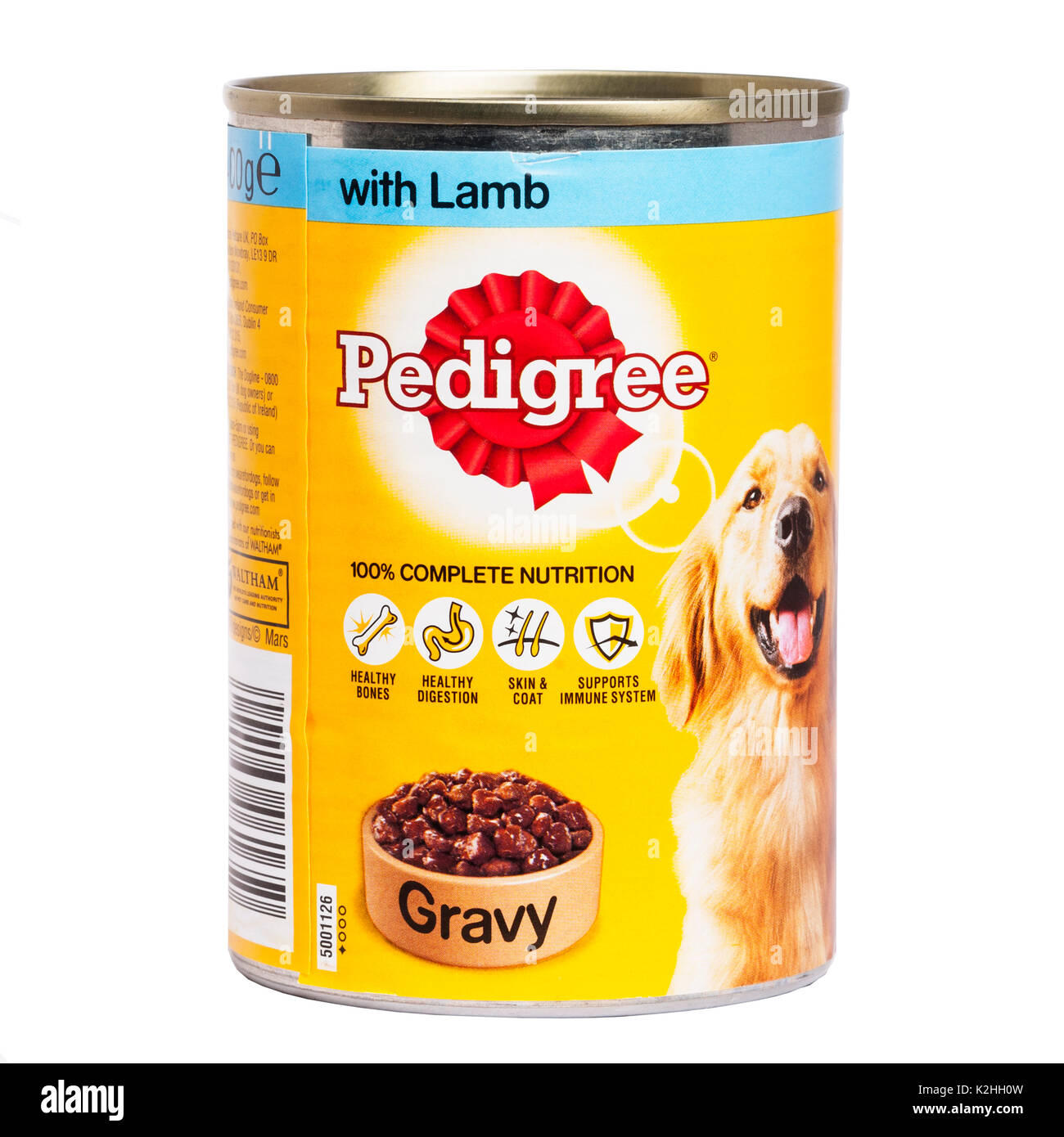 Can A Dog Eat Dry Gravy Train