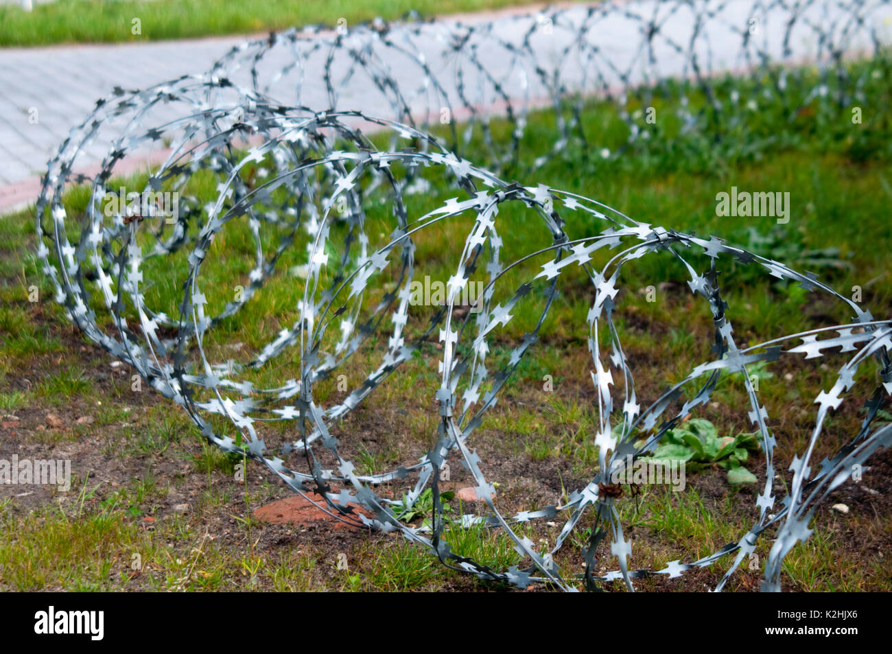 sophisticated High Resolution Chicken Wire Gallery - Diagram ...