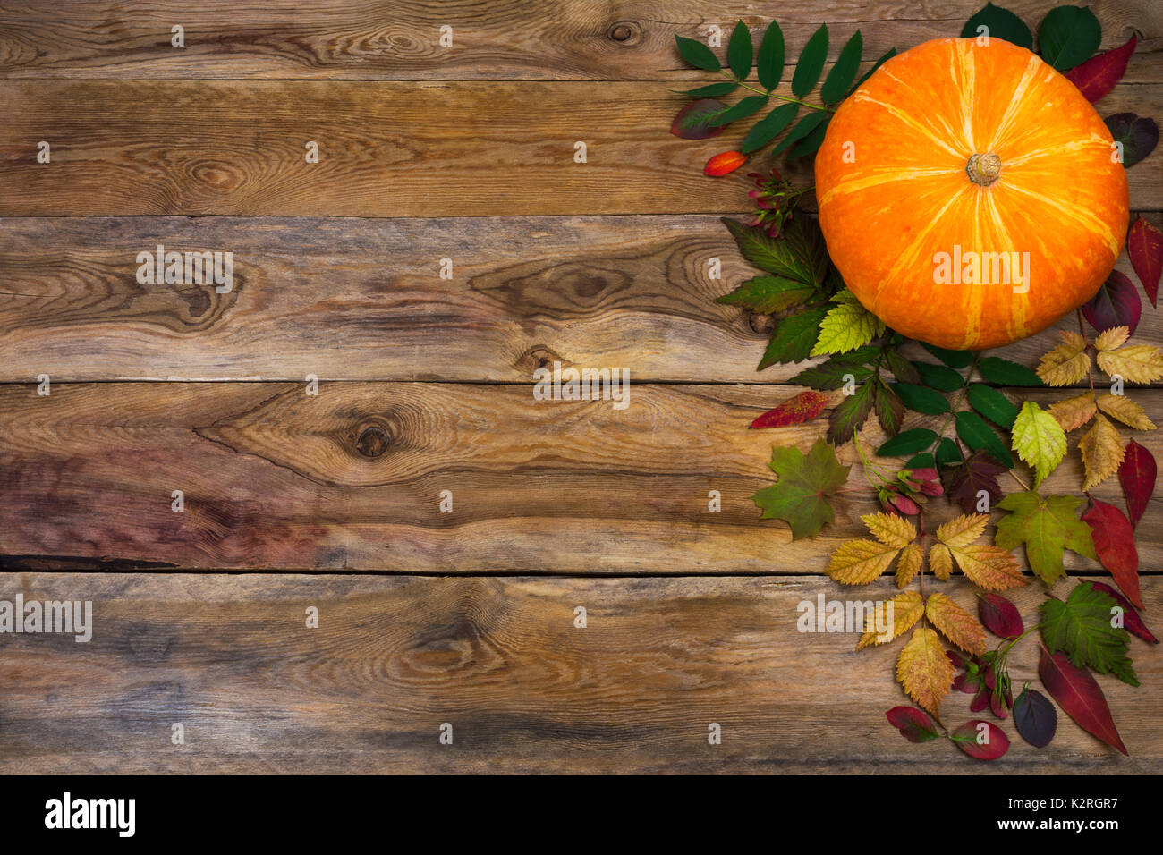 Happy Thanksgiving Background With Pumpkin And Autumn Leaves On The Left Side Of Rustic Wooden Table Fall Decor Seasonal Vegetables Copy Space