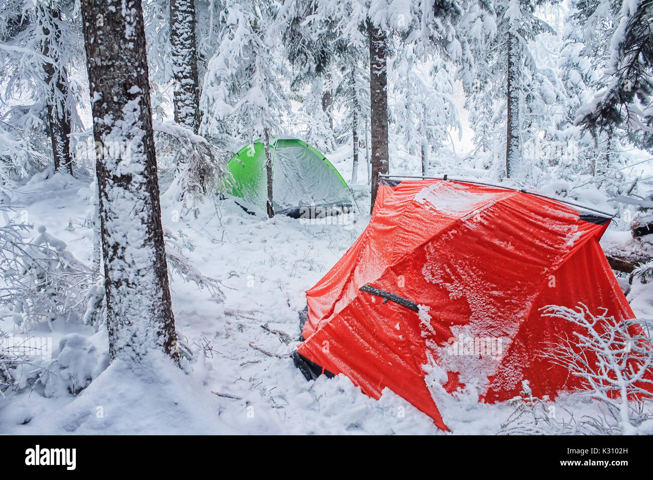 Red and green tent in winter forest. Tourist c& in snowy . Two tents in the snow in & Red and green tent in winter forest. Tourist camp in snowy . Two ...