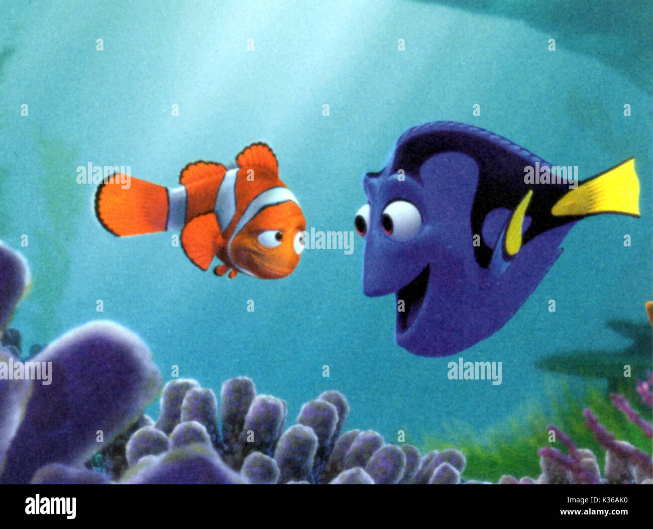 changes in marlin in finding nemo essay In finding nemo the supporting characters when nemo is suddenly taken away, marlin must try to find the unlikely challenge was how much to change its.
