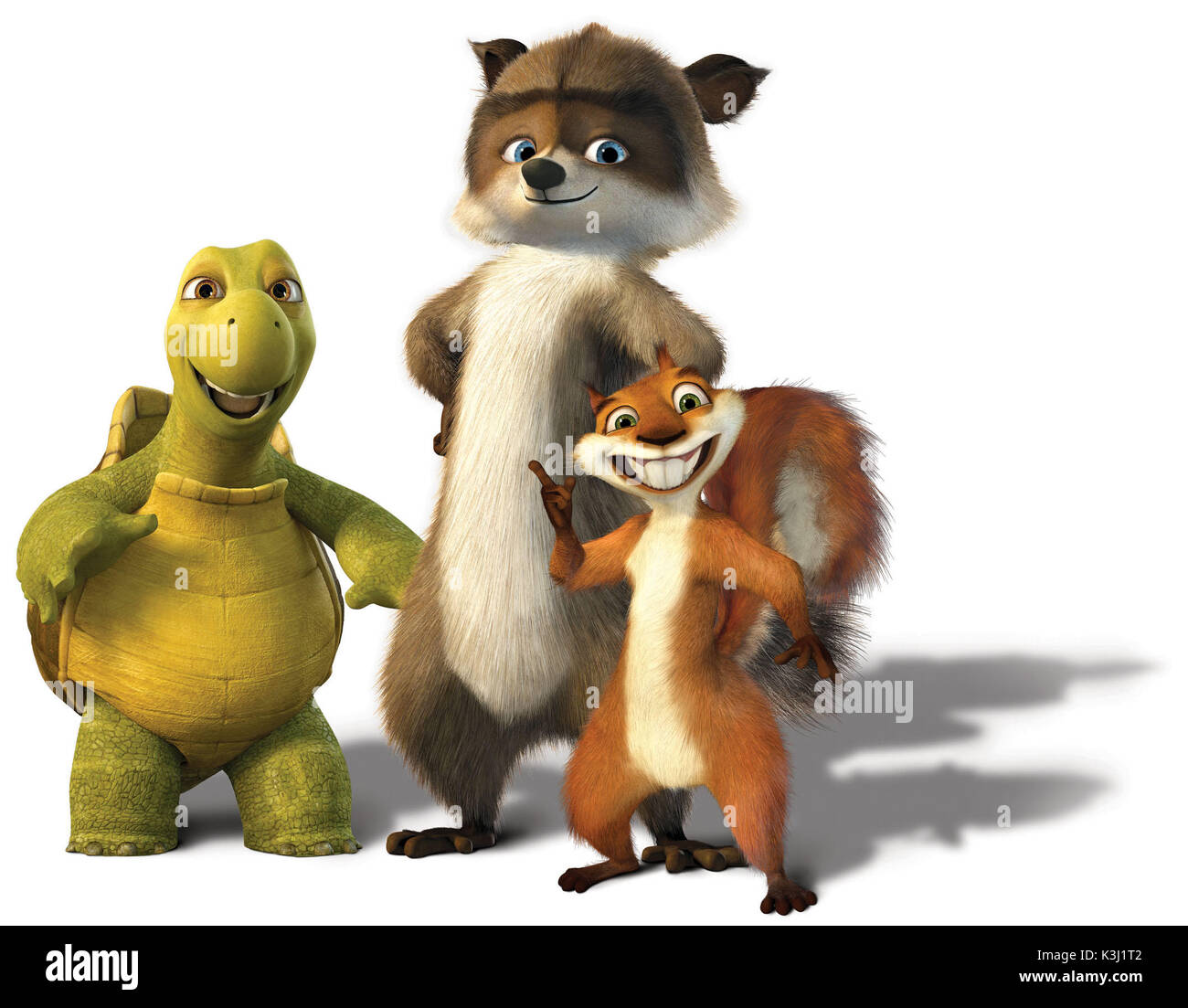 Uncategorized Verne The Turtle pictured from left verne the turtle rj raccoon and hammy squirrel