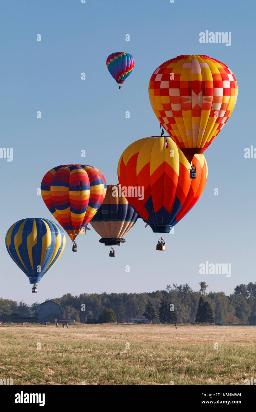 colorful hot air balloons float through the sky in albany, oregon
