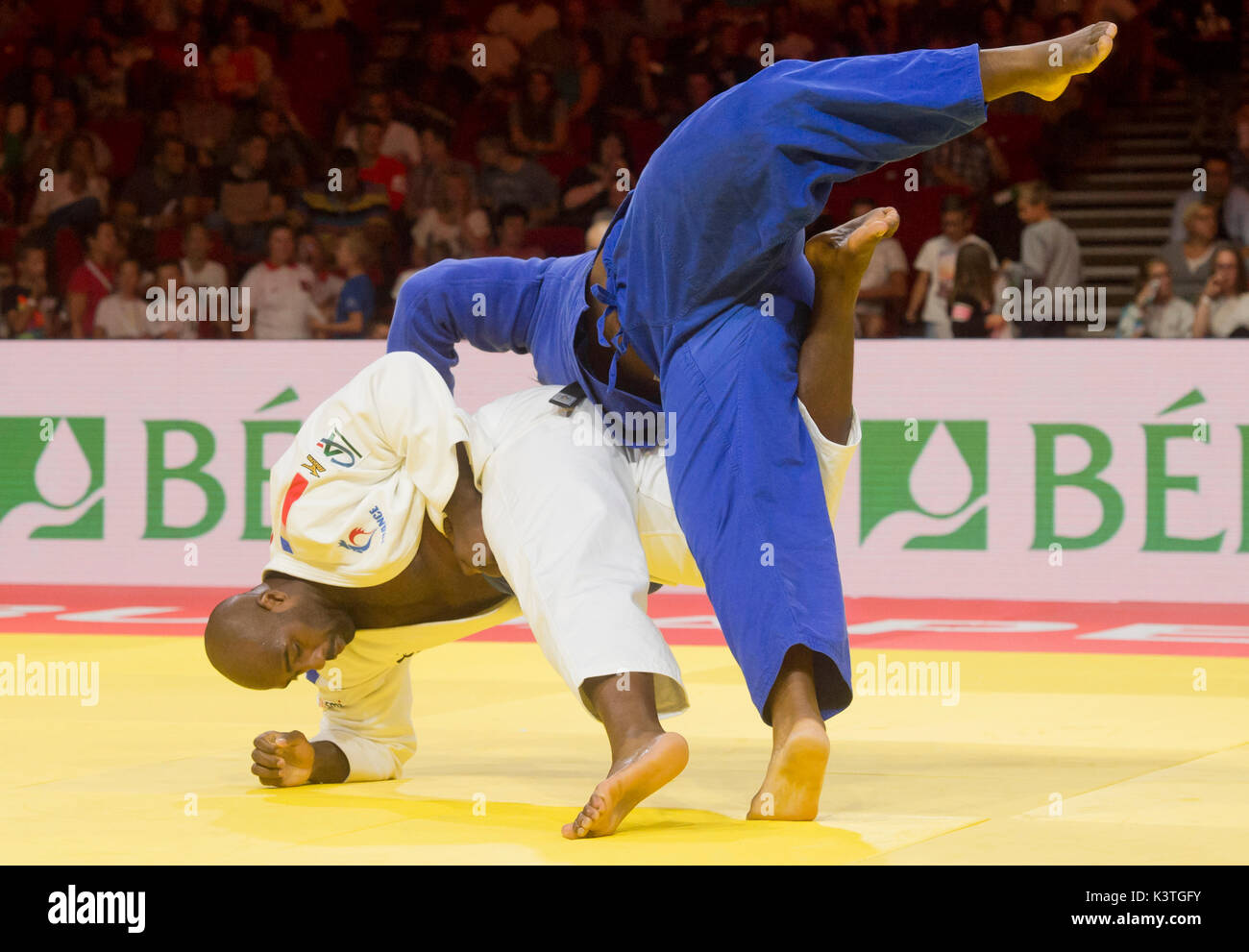 teddy in french