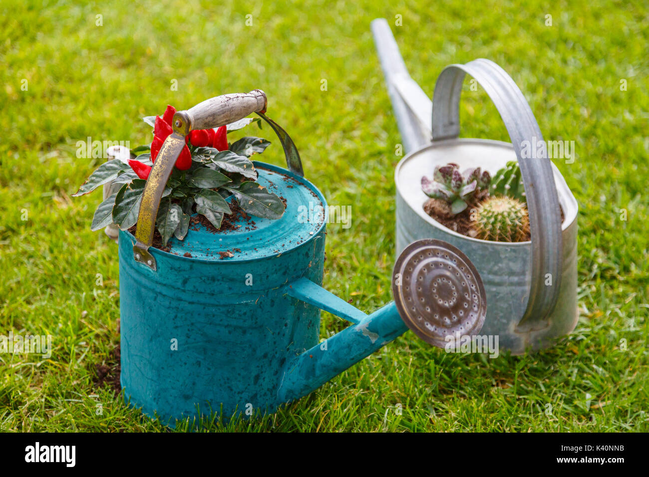 Rusty Watering Can In Stock Photos Amp Rusty Watering Can In
