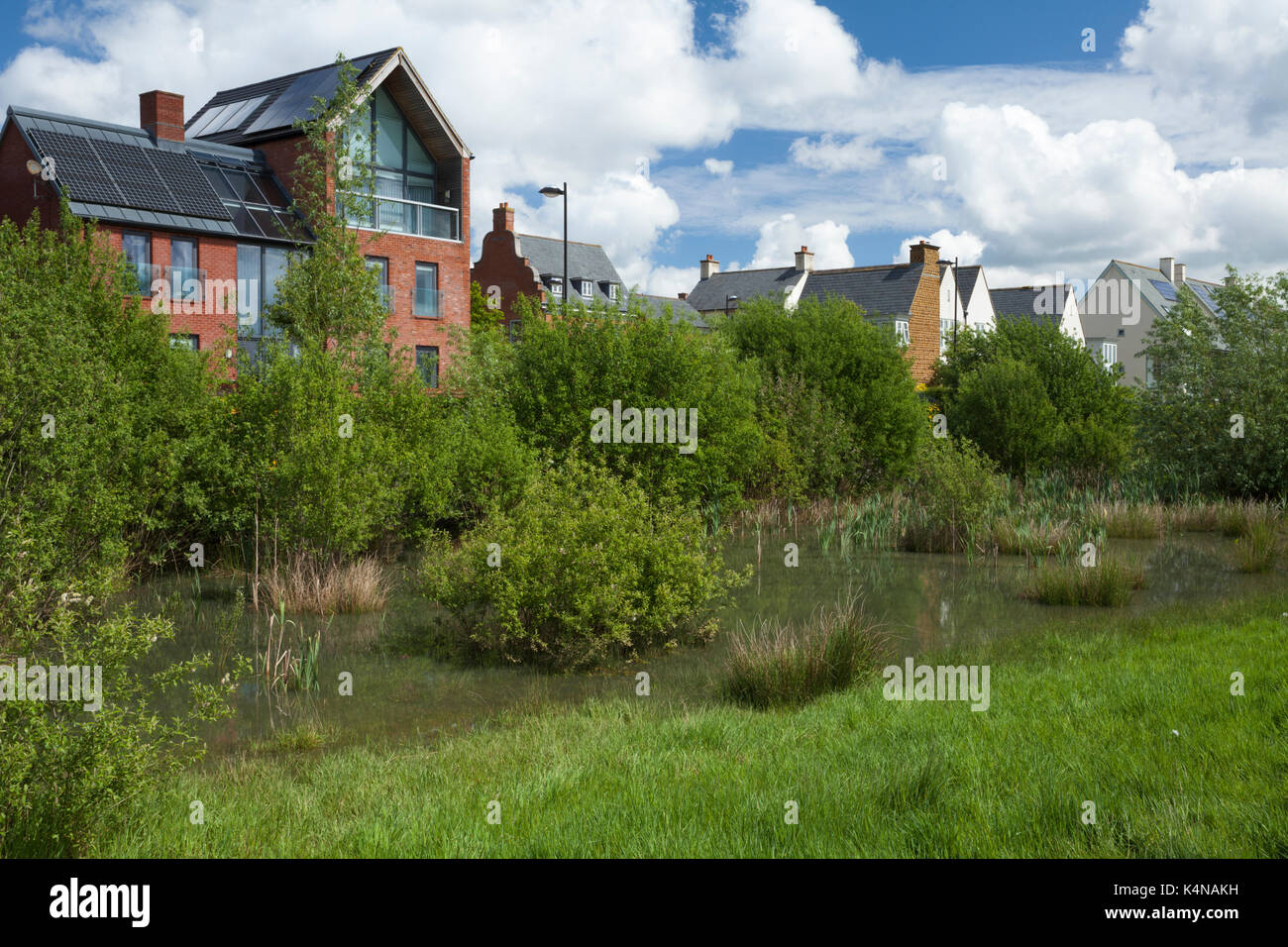 A mix of contemporary architectural styles beside parkland with ...