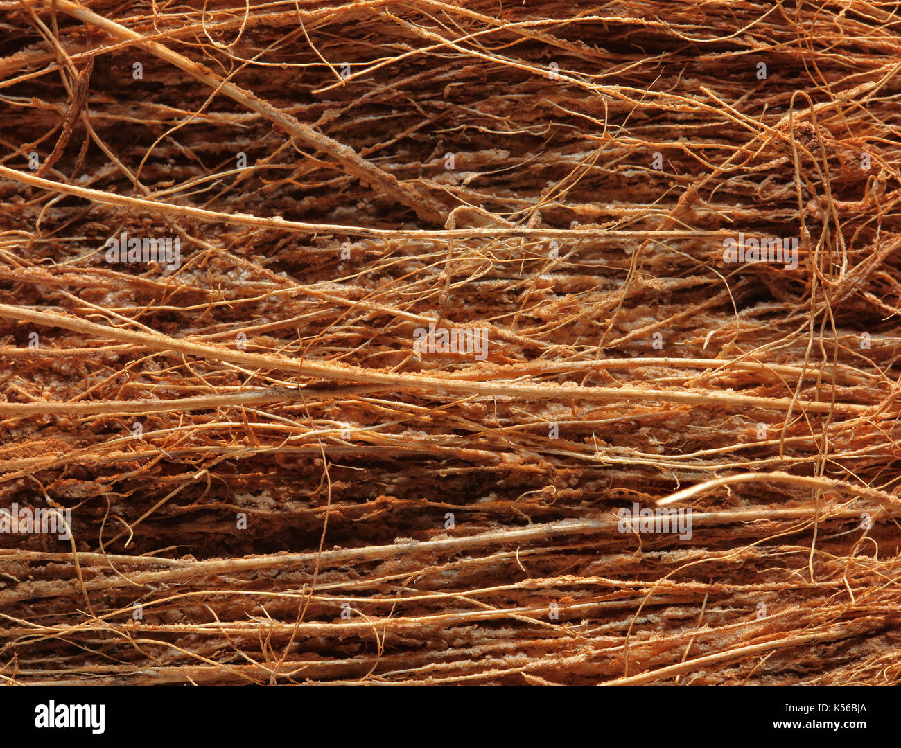 coir fiber stock photos coir fiber stock images alamy. Black Bedroom Furniture Sets. Home Design Ideas