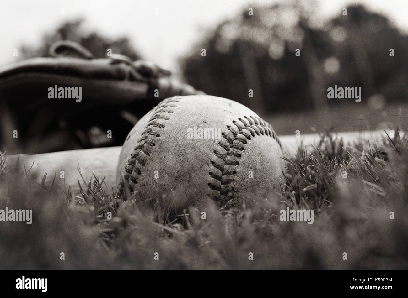 Softball glove and ball black and white