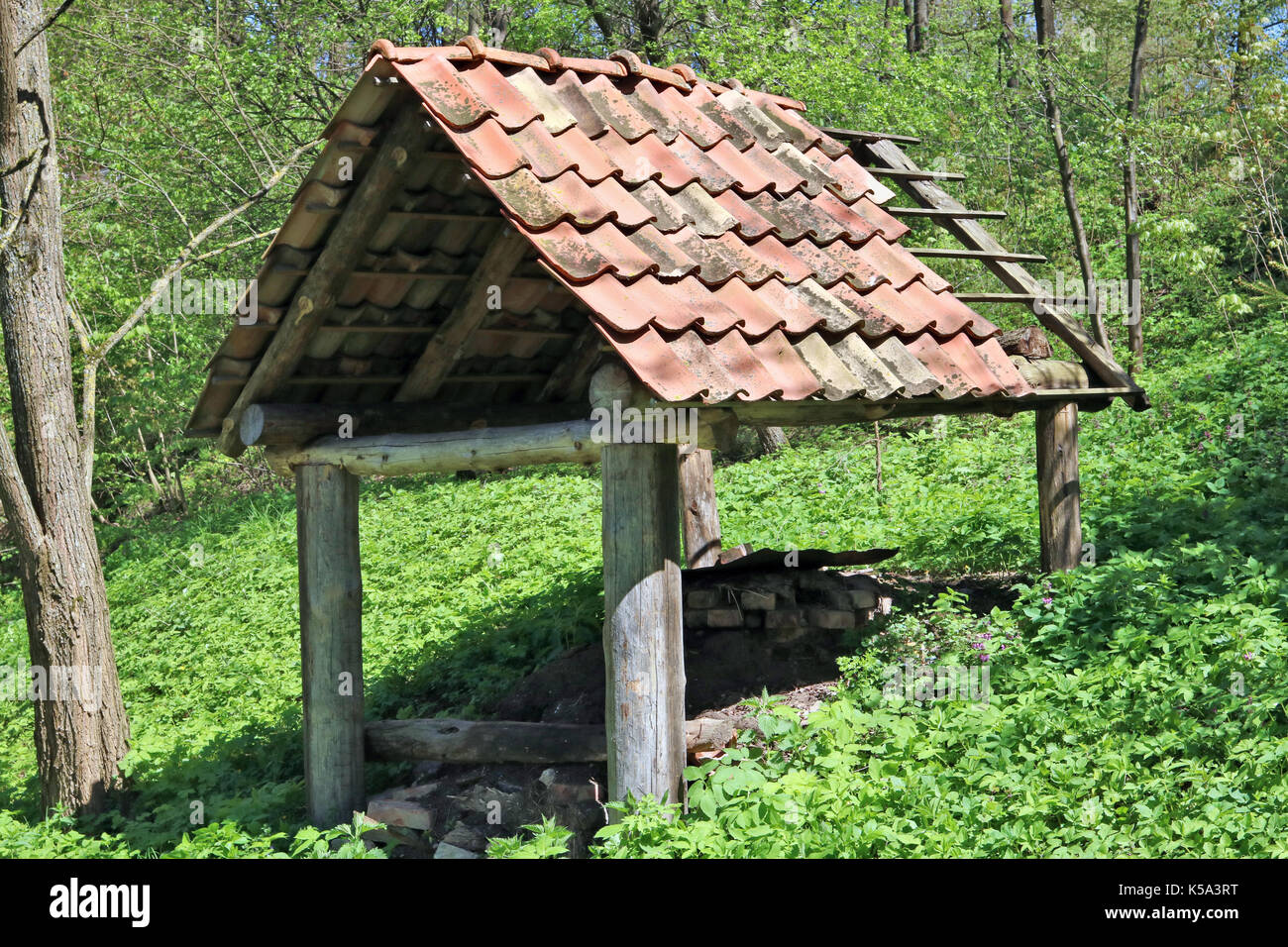 A Shed Without Walls For Storage Of Firewood Is Located On The Slope Of A Forest  Hill. Spring Sunny Day