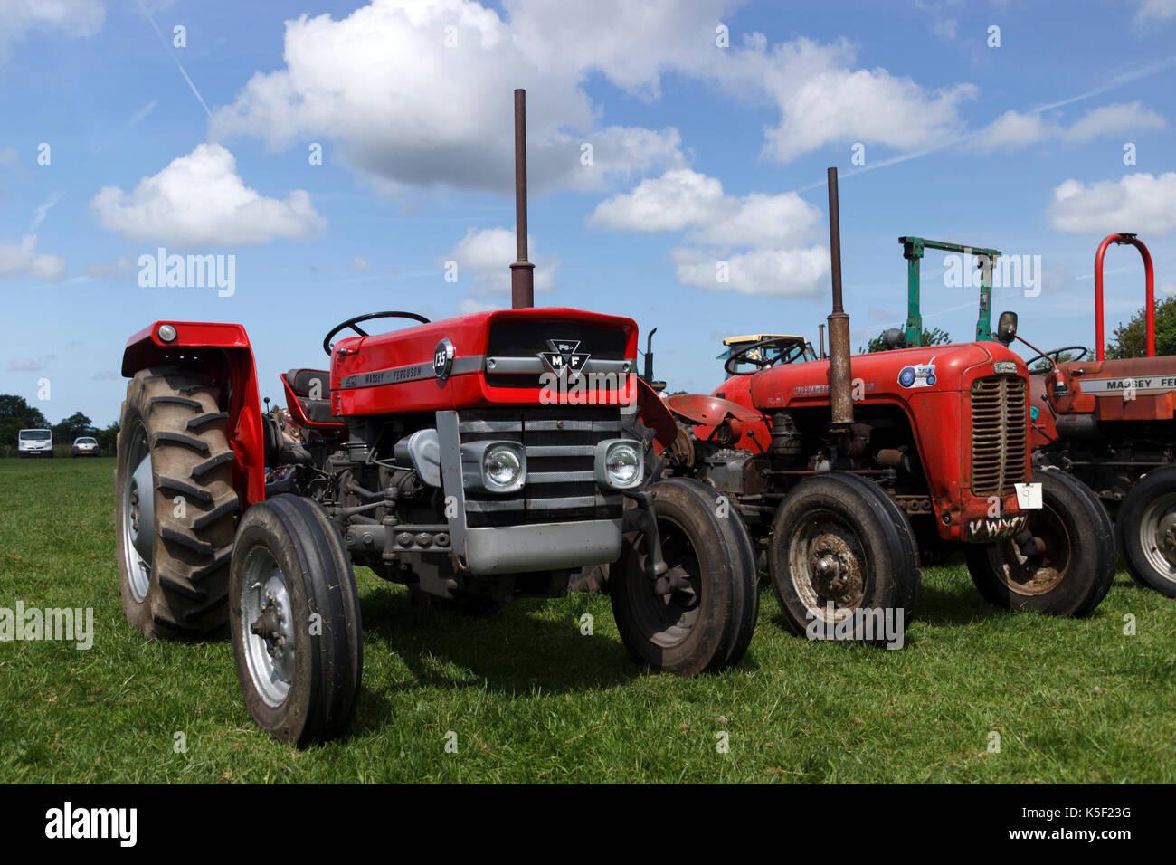 massey ferguson 135 tractor stock photos massey ferguson. Black Bedroom Furniture Sets. Home Design Ideas
