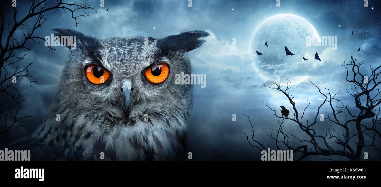 Angry Eagle Owl At Moonlight In The Spooky Forest - Halloween ...