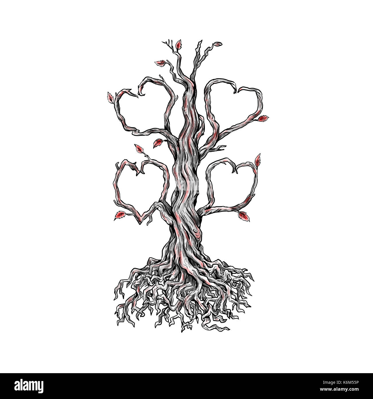 Oak Tree With Roots Tattoo: Tattoo Style Illustration Of A Gnarly Old Oak Tree With