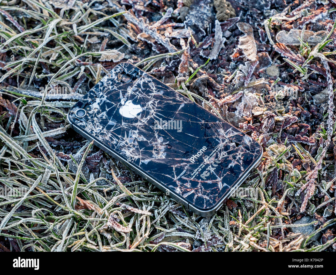 Dropped phone stock photos dropped phone stock images alamy for Dropped iphone in swimming pool