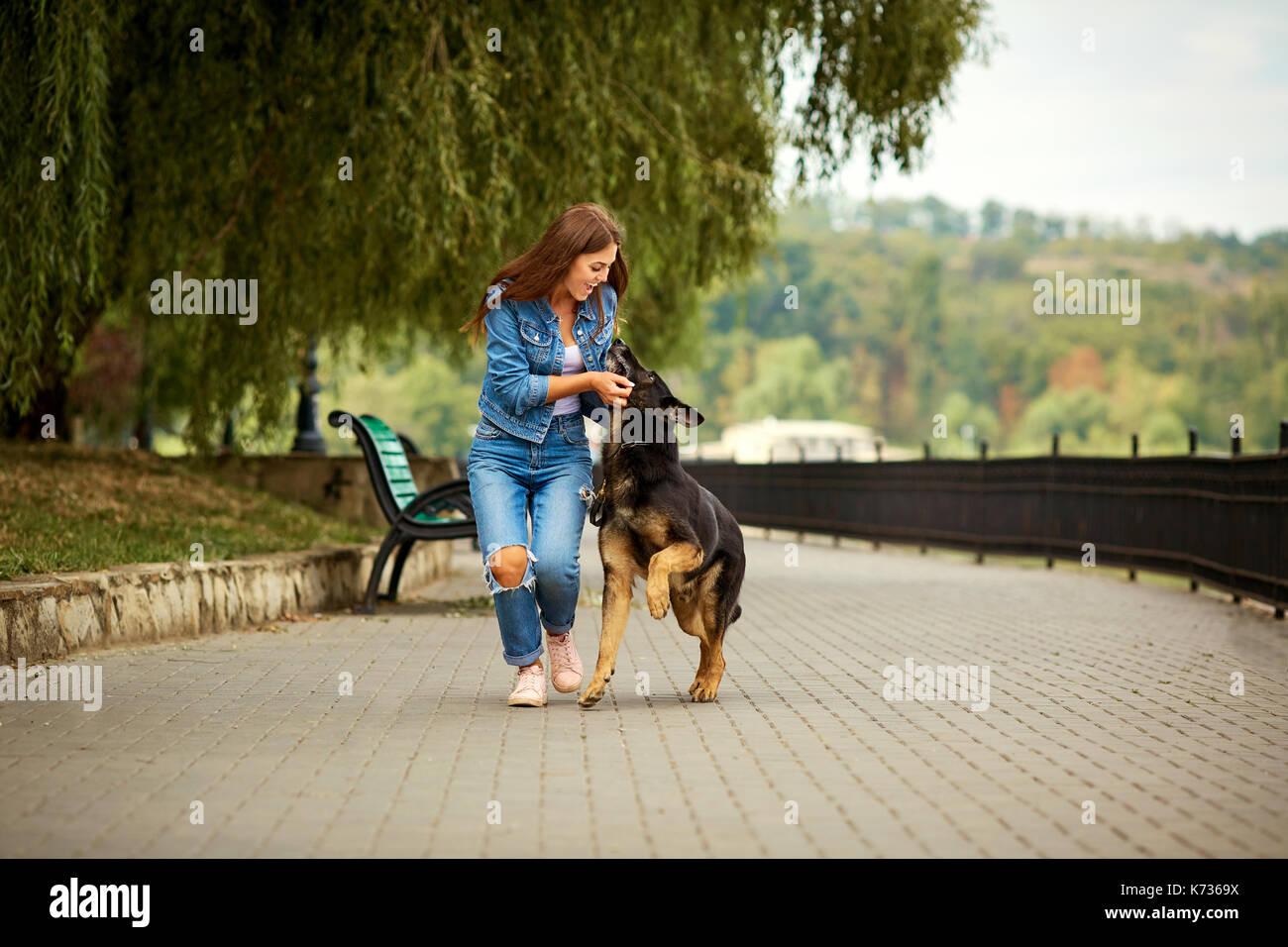 Dog Walks In Abergavenny