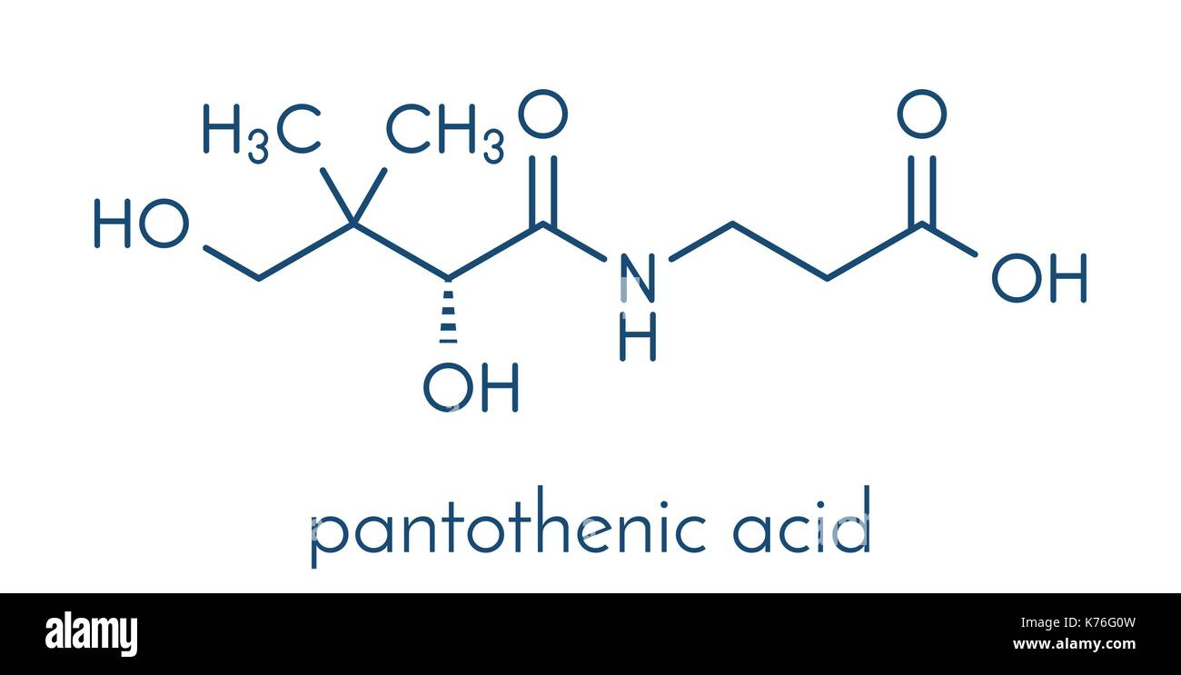 Vitamin B5 (pantothenic acid) 91