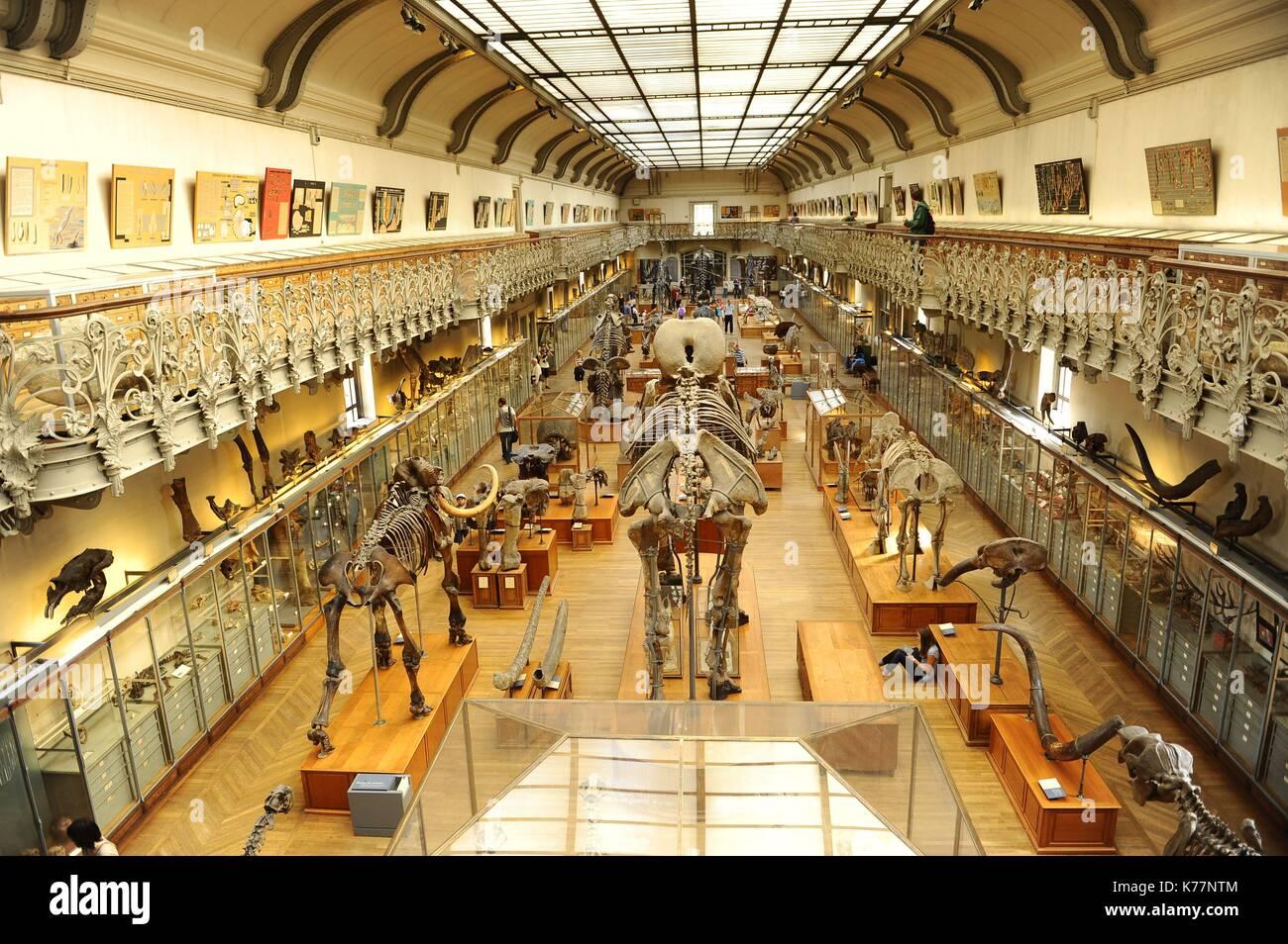 France Paris Jardin Des Plantes National Museum Of Natural Stock