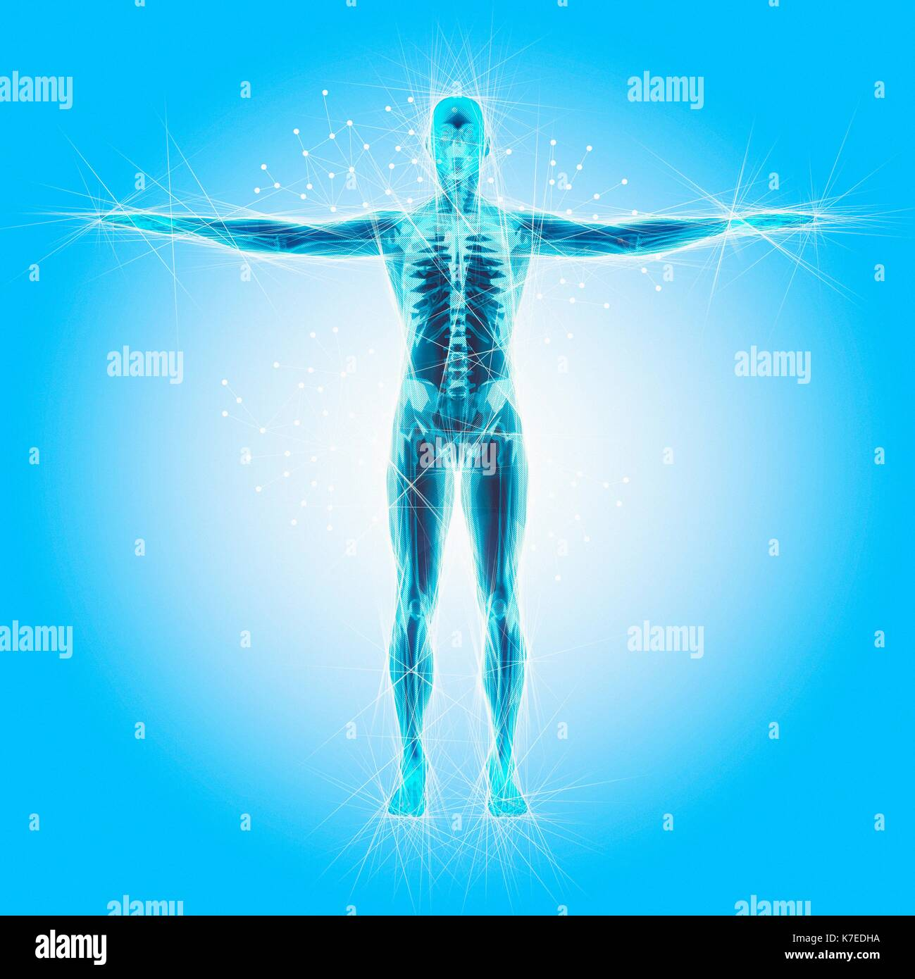 Atomic Structure Of The Human Body Illustration Stock Photo