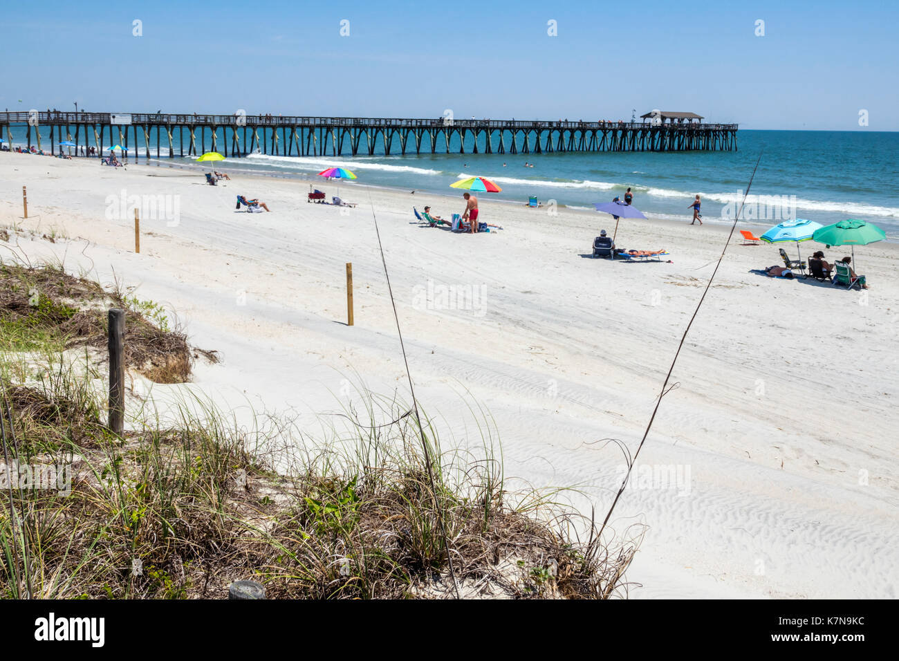 Surf fishing myrtle beach state park best fish 2017 for Fishing piers in myrtle beach