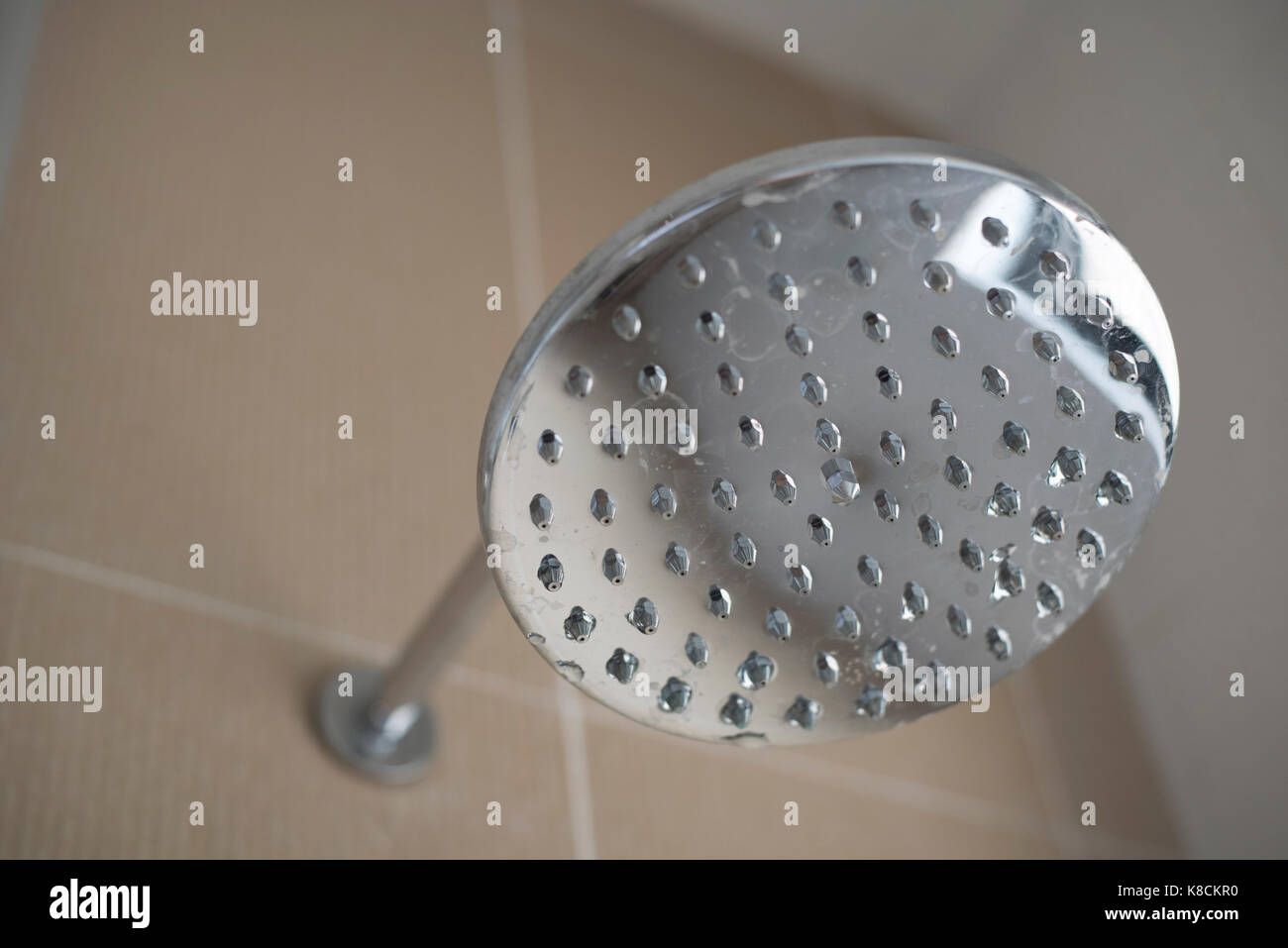 Silver Shower Head Stock Photos & Silver Shower Head Stock Images ...