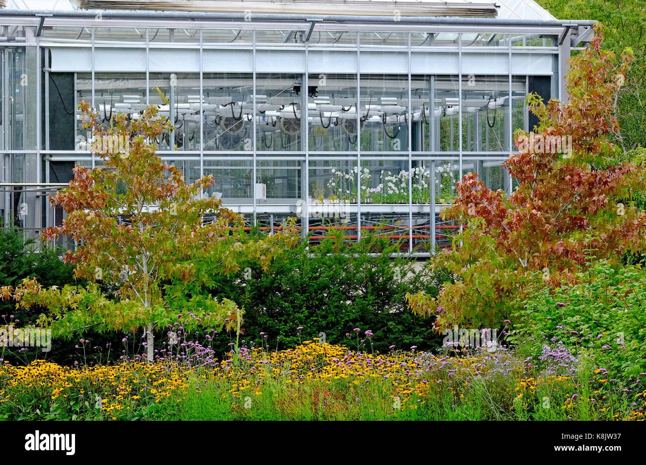 Cambridge University Botanic Garden Stock Photos