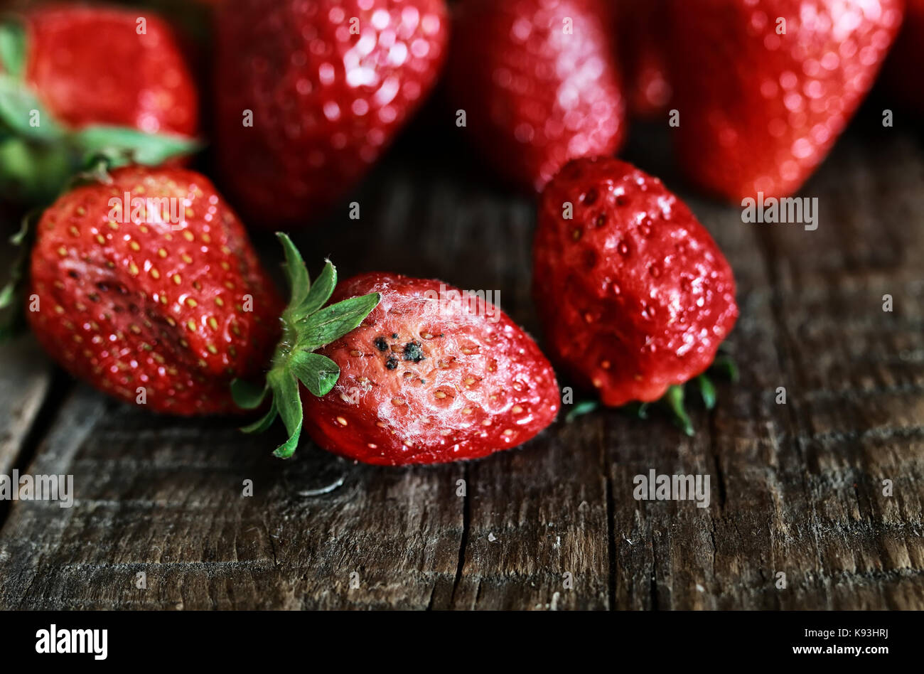 Rotten Strawberries Rotten Strawberries St...
