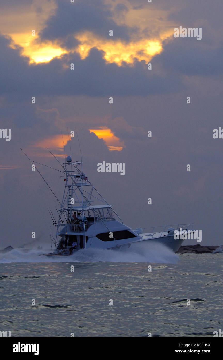 Billfish stock photos billfish stock images alamy for Port aransas deep sea fishing