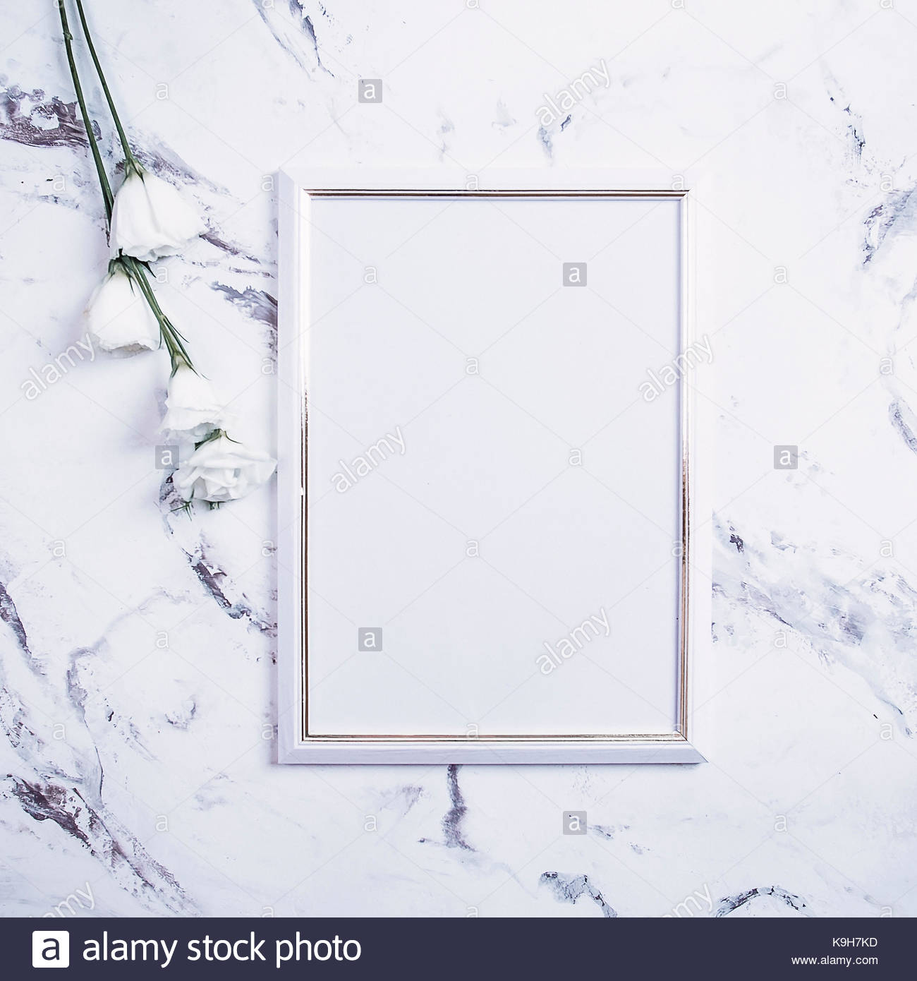 Blank photo frame and white flowers over marble table background ...