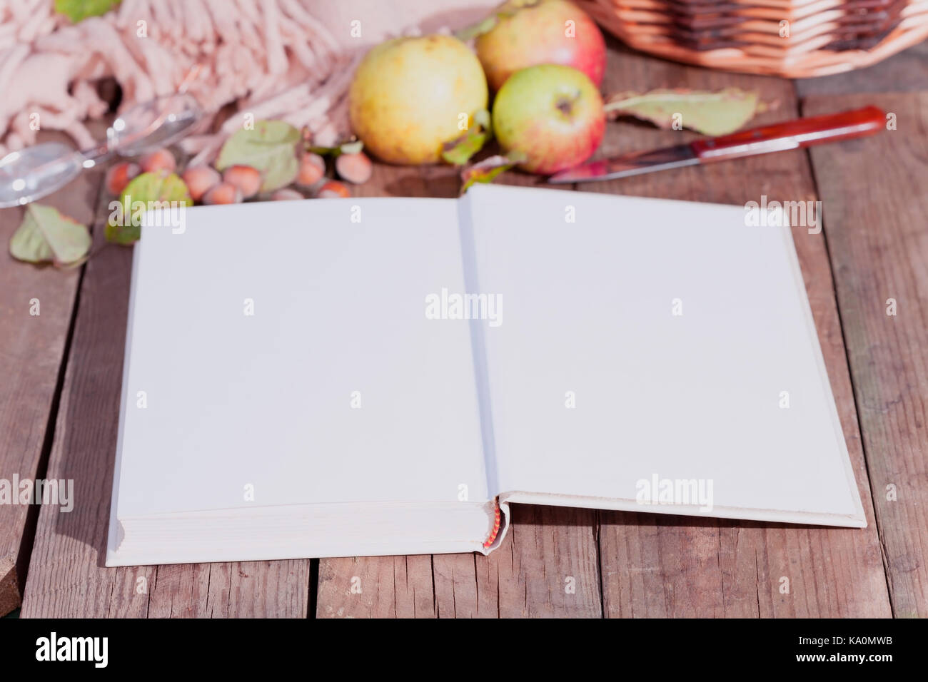 Books on do it yourself stock photos books on do it yourself stock open book on a wooden table with apples on an autumnal day stock image solutioingenieria Images