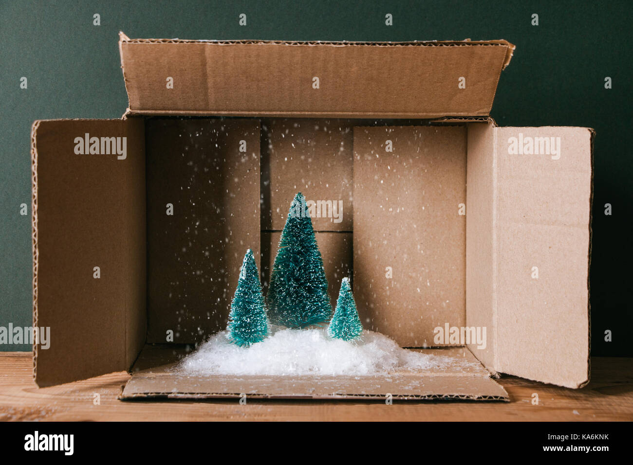 miniature of christmas trees with snow in a cardboard box concept of magic christmas present - Christmas Tree In A Box