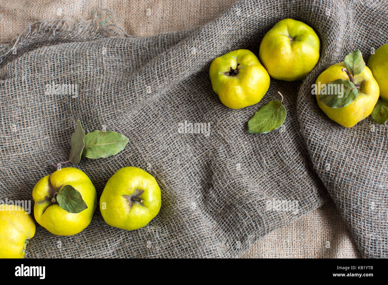 Quince stock photos quince stock images alamy vitamins composition background concept greeny yellow fruits of rough almost round form that biocorpaavc Image collections