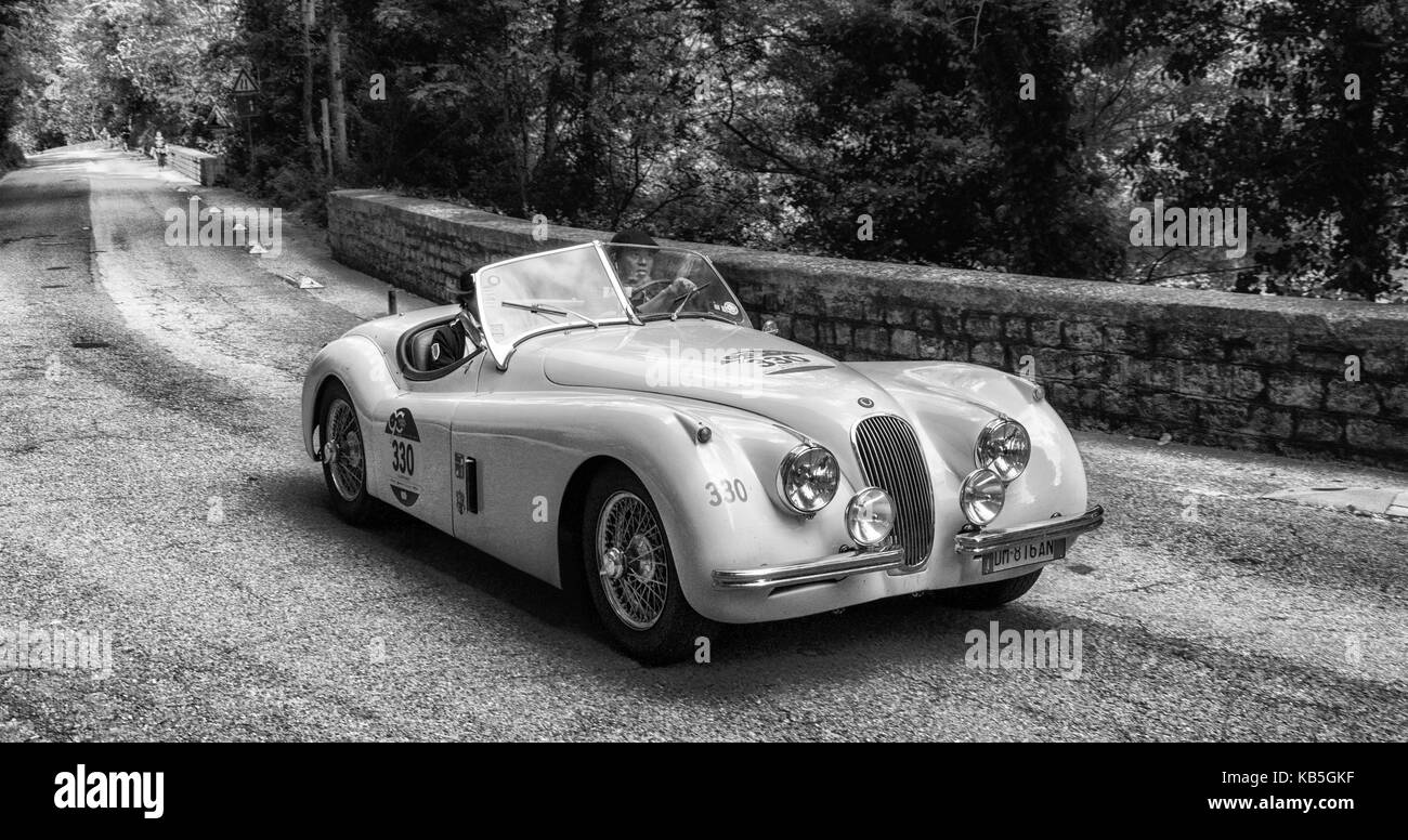 JAGUAR XK 120 OTS ROADSTER 1954 on an old racing car in rally Mille ...
