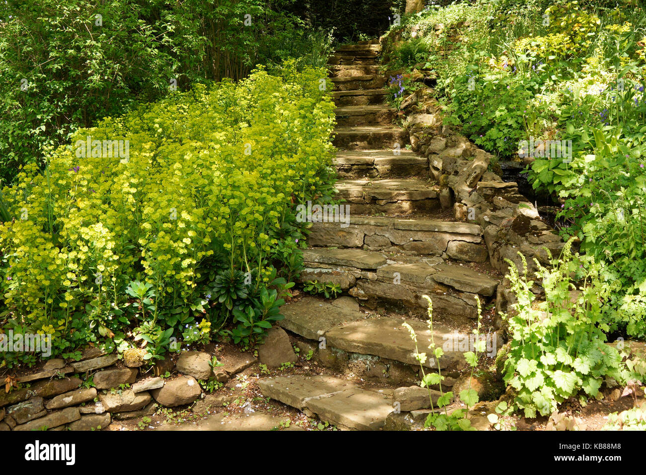 Natural Stone Stairs In A Garden