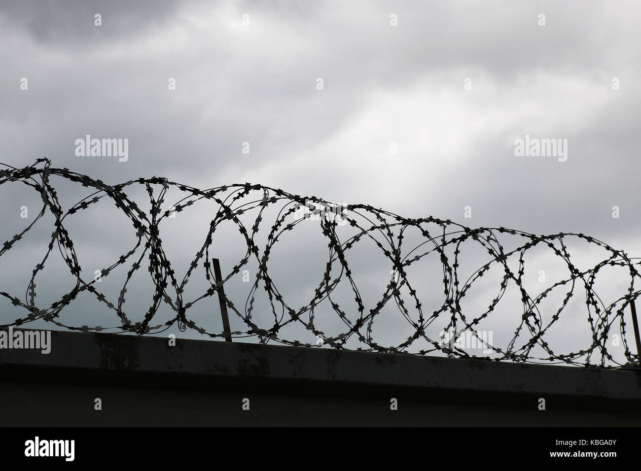 Barb Wire Fences Stock Photos & Barb Wire Fences Stock Images - Alamy