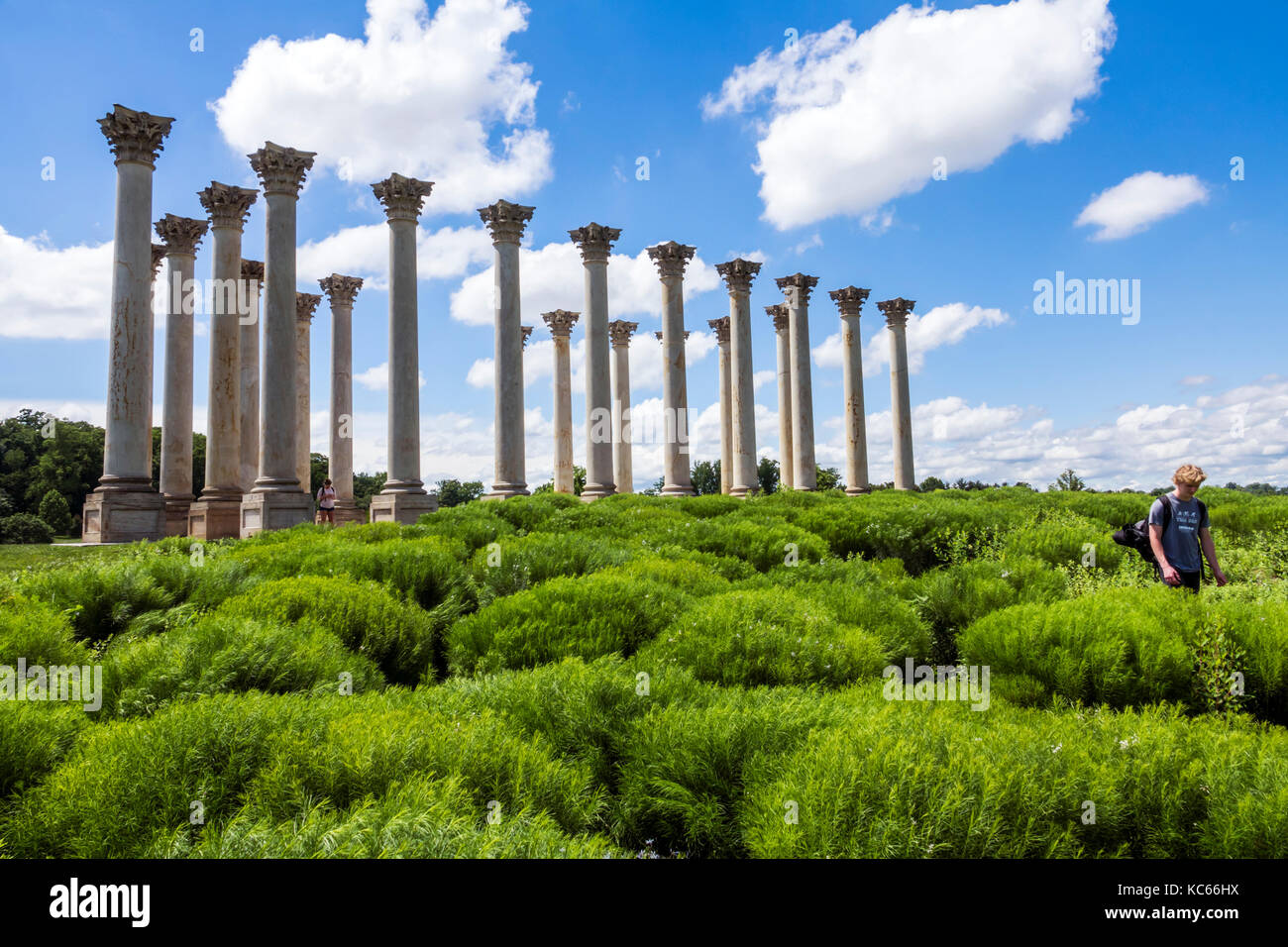 Arboretum Columns Dc Stock Photos Arboretum Columns Dc Stock Images Alamy