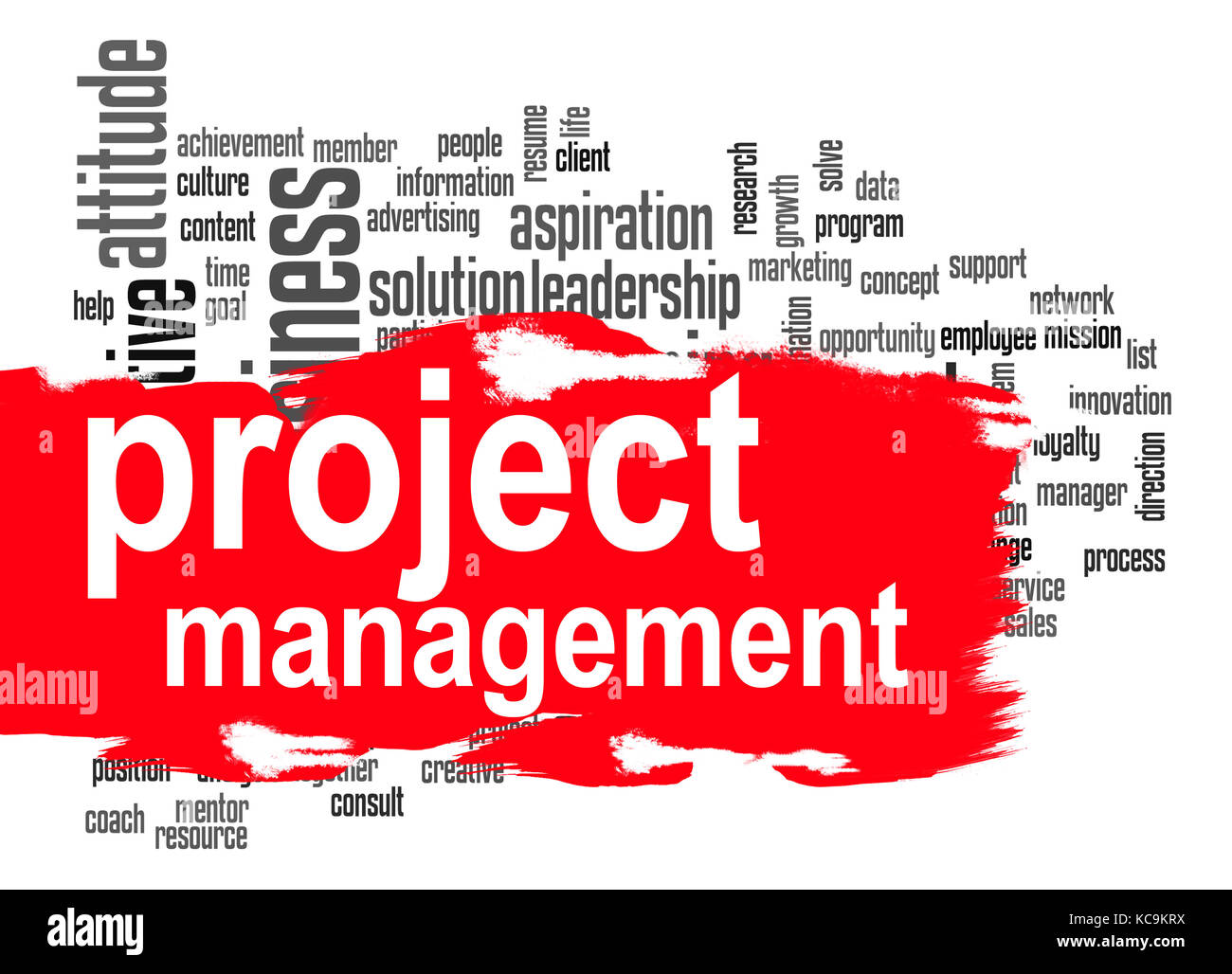 Project management word cloud image with hi-res rendered artwork ...
