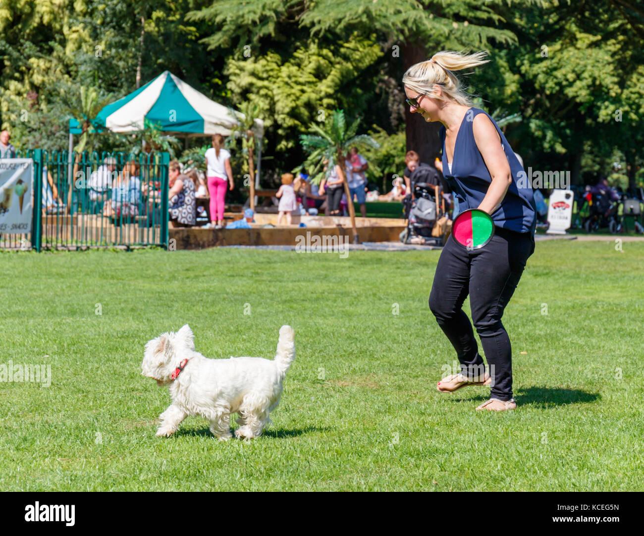Dog Walking In Melton Mowbray