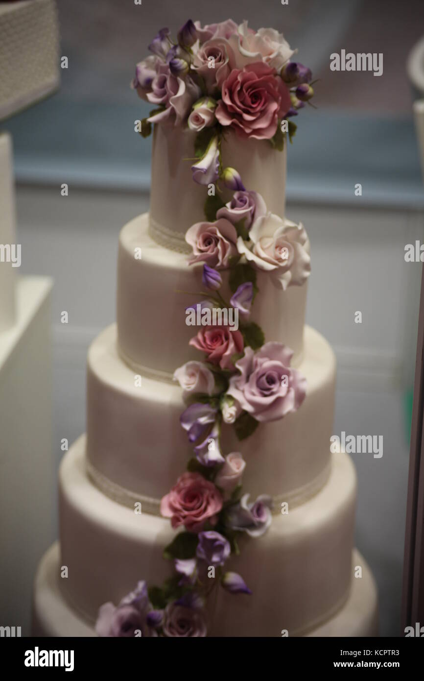Cake Bake Show Excel