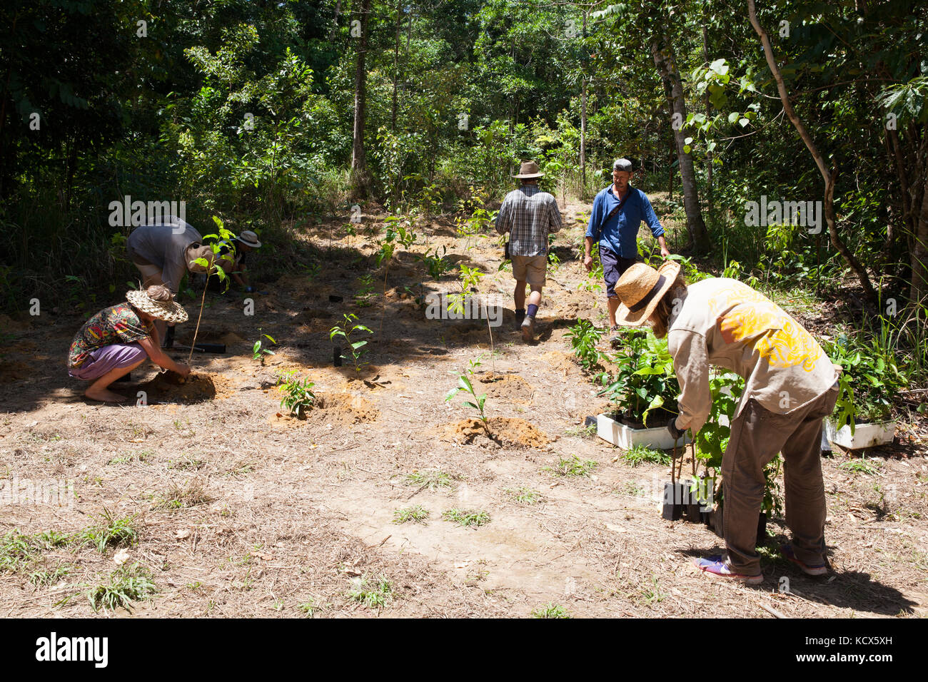 Human growth stages stock photos human growth stages for Diwan queensland