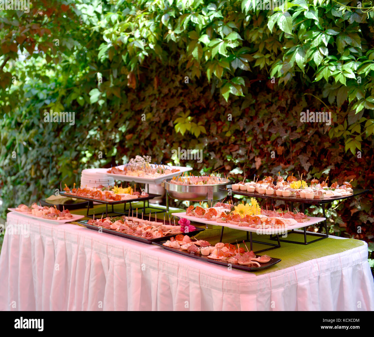 Catering food outdoor in a garden delicatessen buffet, cold cuts ...