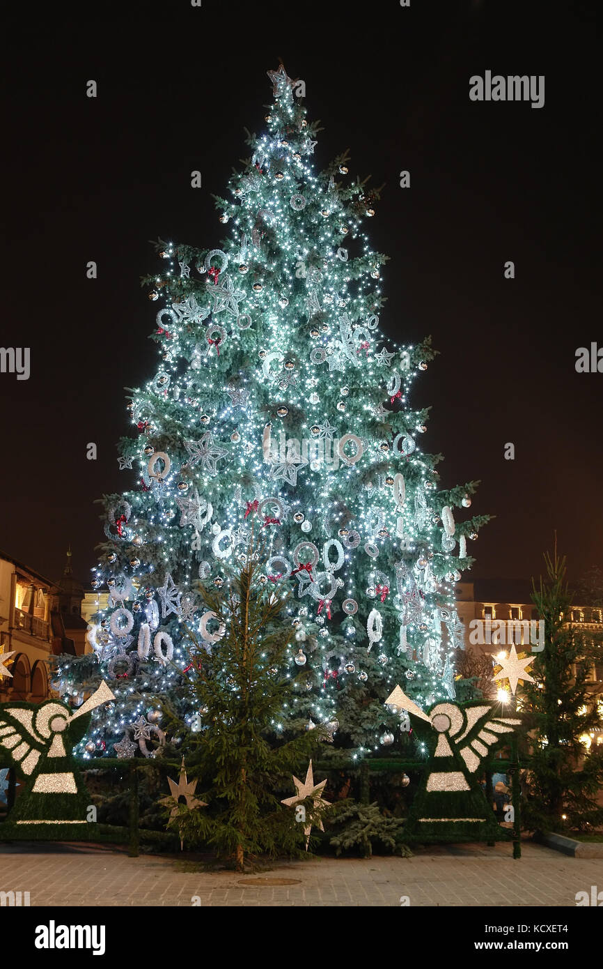 giant outdoor christmas tree decorated with lights illuminated at night