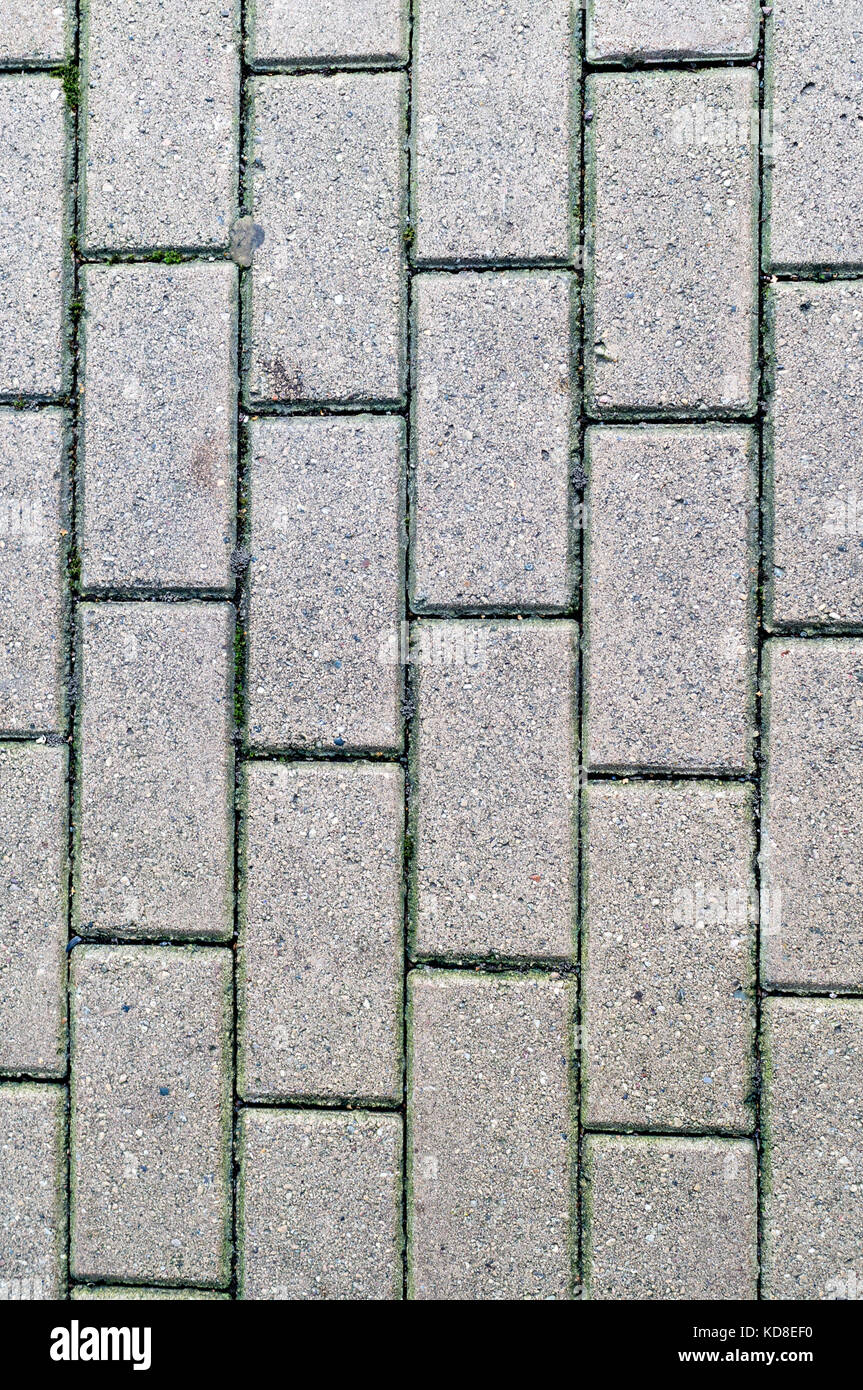 decorative paving tile on the sidewalk. background ...