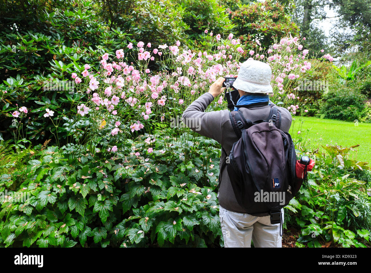 Labelle stock photos labelle stock images alamy for Jardin remarquable 06