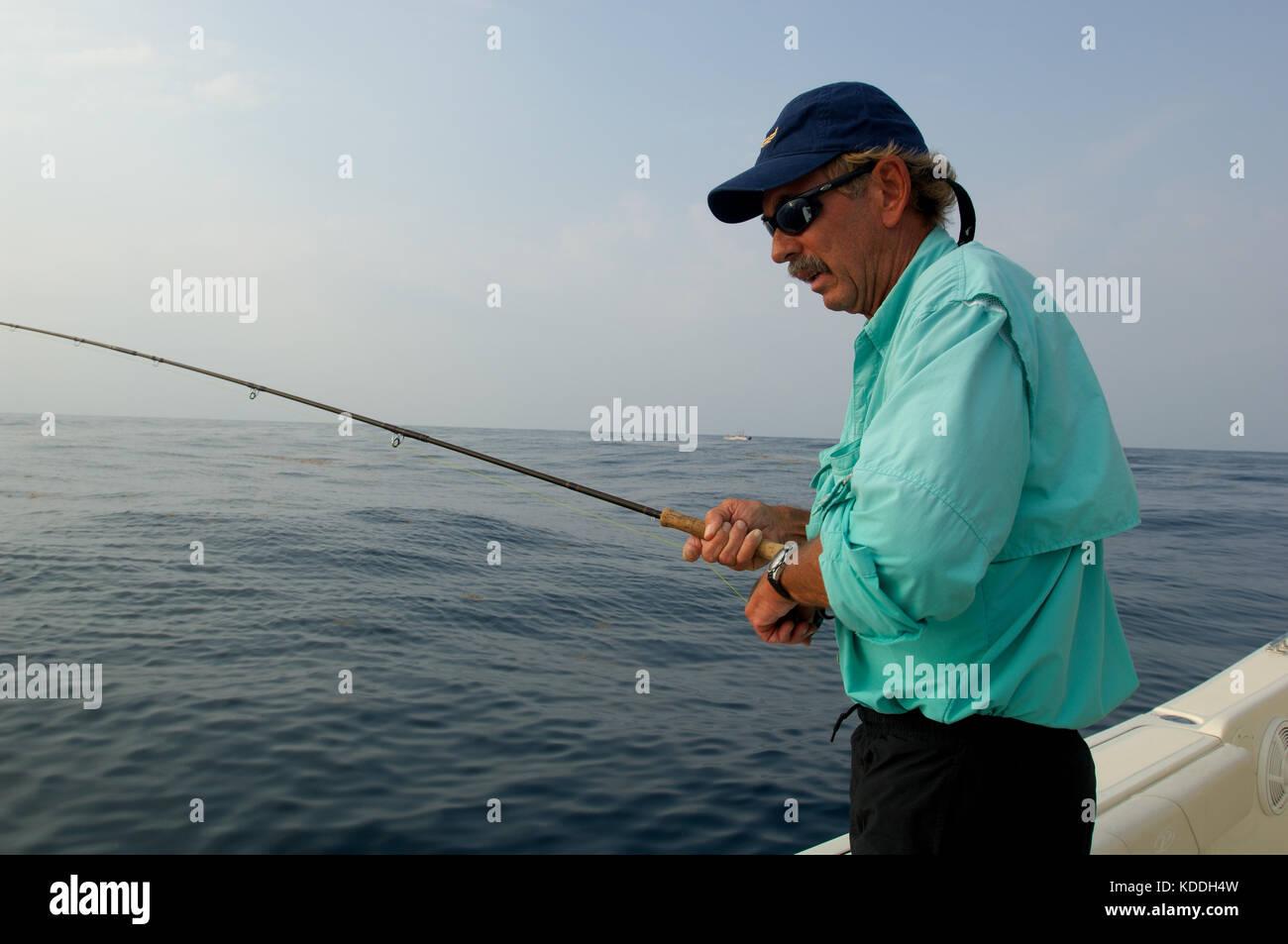 Deep sea angler fish stock photos deep sea angler fish for Offshore fishing texas