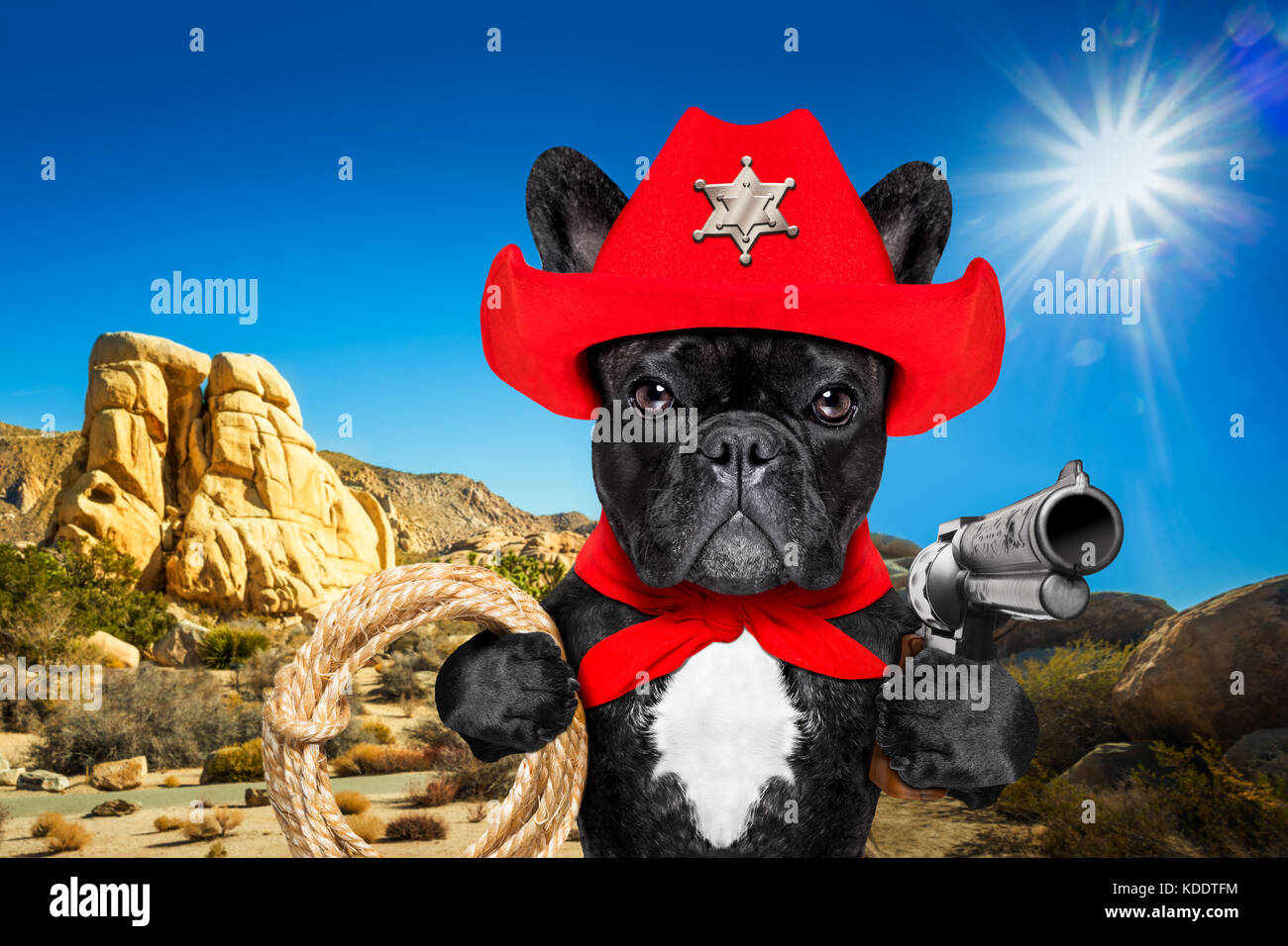 Western Cowboy Sheriff French Bulldog Dog With Rope Red Scarf And