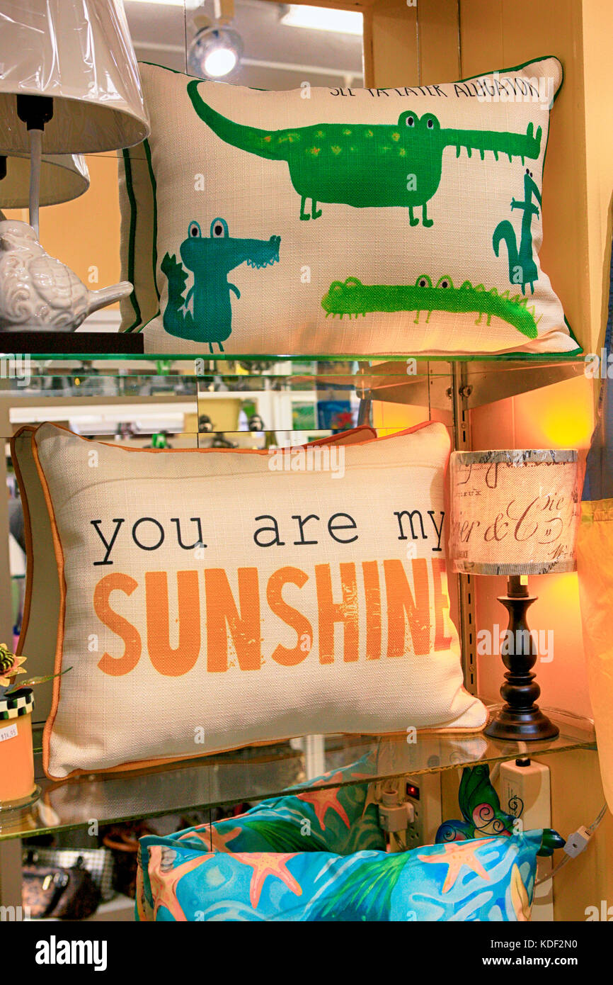 Window Display Of Home Decor Items On Sale In Venice FL
