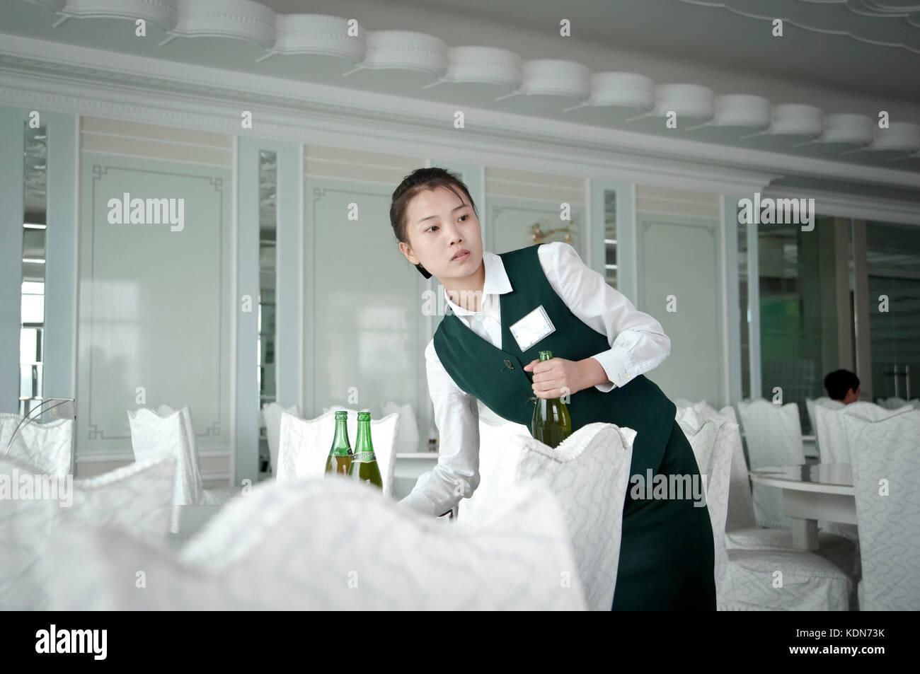 Pjongjang Hotel Yanggakdo  Stock