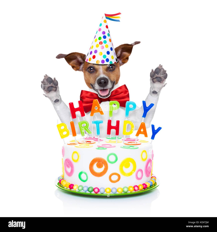 Birthday Cake Photo Frame Free Download