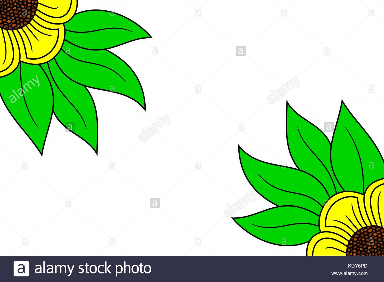 Partial Drawing Of A Yellow Flower On A White Background Vector
